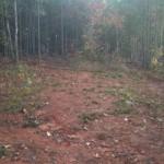 Backyard 8 - Hill (seed)